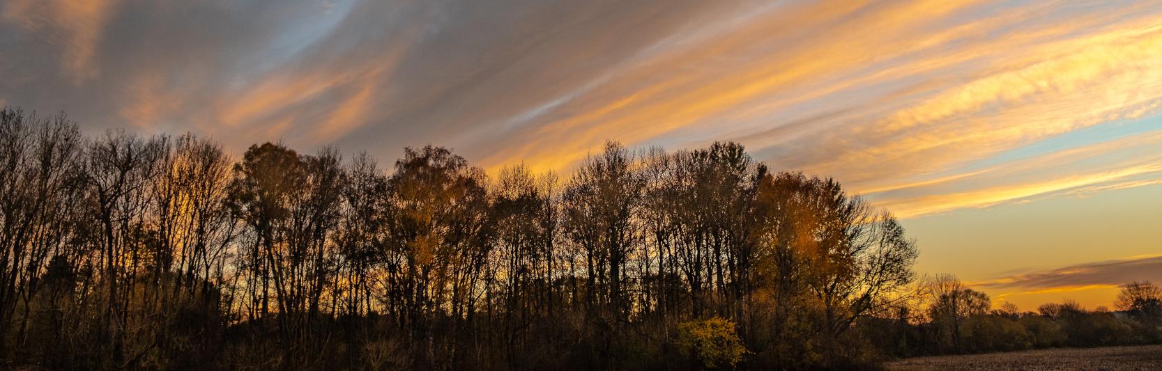 Bestattungen bei Sonnenuntergang in Gröbenzell